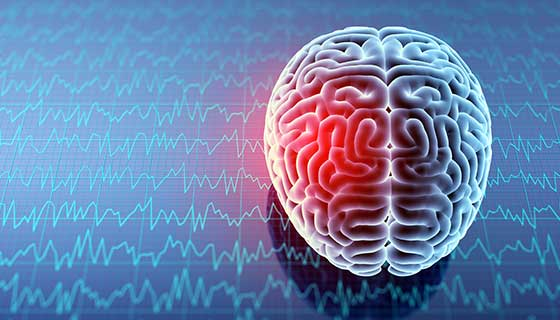 Dealing With Brain Injuries And Diseases: Possible Treatment